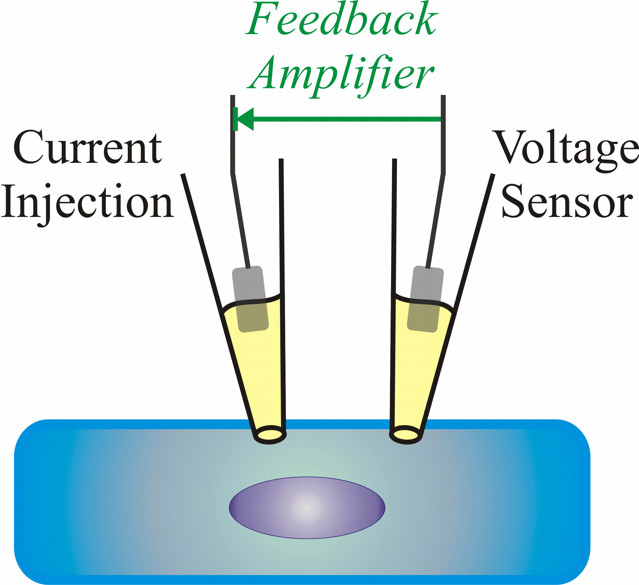 voltage clamp methode