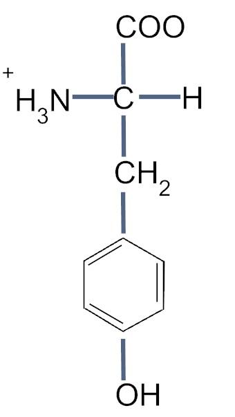 Tryrosine