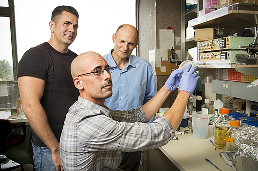 From left: Emmanuel Nivet and Juan Carlos Belmonte. Seated: Ignacio Sancho Martinez. (Source: Salk Institute for Biological Studies)
