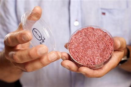 A new Cultured Beef Burger made from cultured beef grown in a laboratory from stem cells of cattle, is held by the man who developed the burger, Professor Mark Post of Netherland's Maastricht University, during a the world's first public tasting event for the food product in London, Monday Aug. 5, 2013. The Cultured Beef could help solve the coming food crisis and combat climate change according to the producers of the burger which cost some 250,000 euros (US dlrs 332,000) to produce. (AP Photo / David Parry, PA)